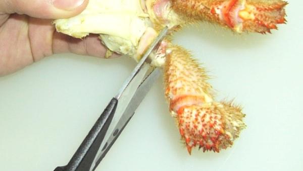 カニを食べる際に必要な道具 タイトル画像