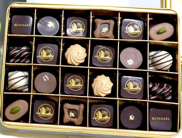 ライオン像100周年記念 ロイスダール チョコレートパッケージ画像